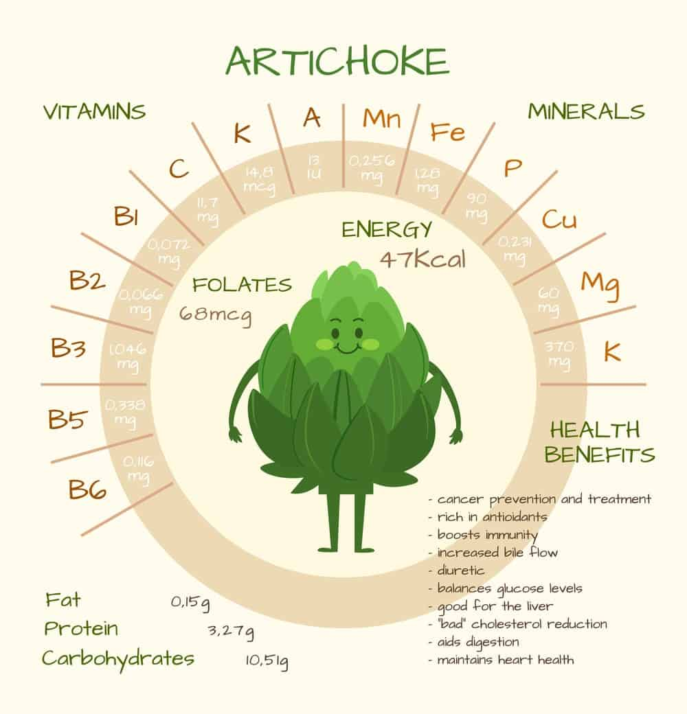 Artichoke Nutrition Facts Chart