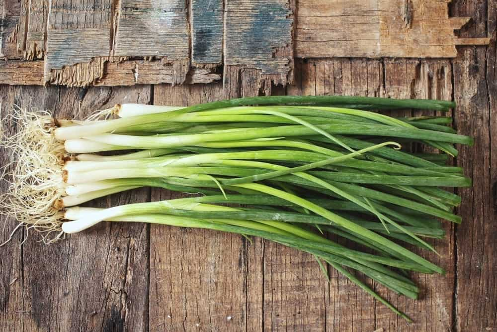 Basic green onions on wooden background.