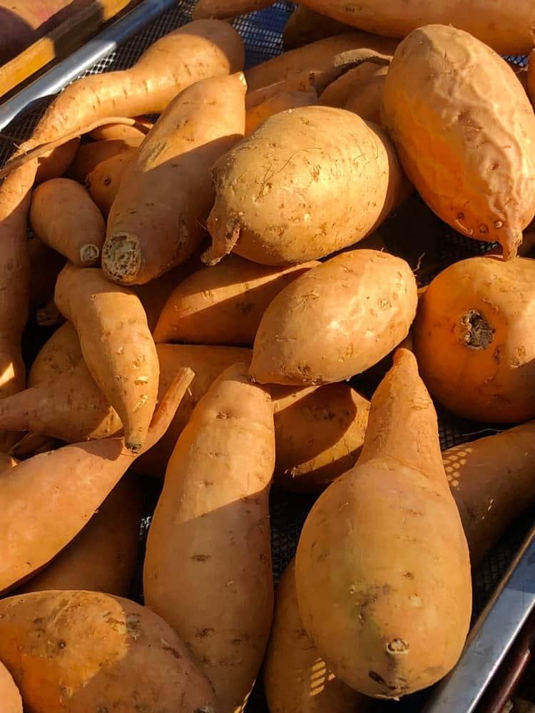 Carolina Bunch Sweet Potatoes