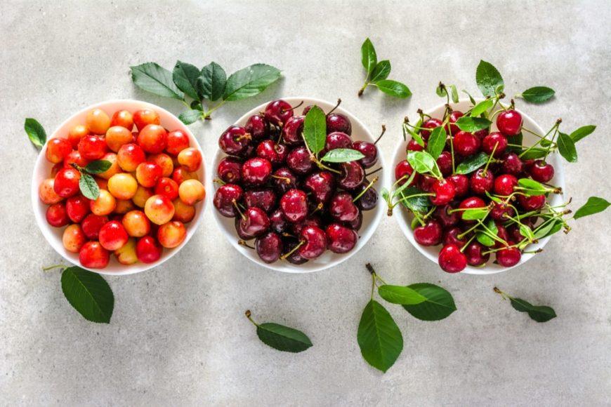 28 Different Types Of Cherries Popoptiq