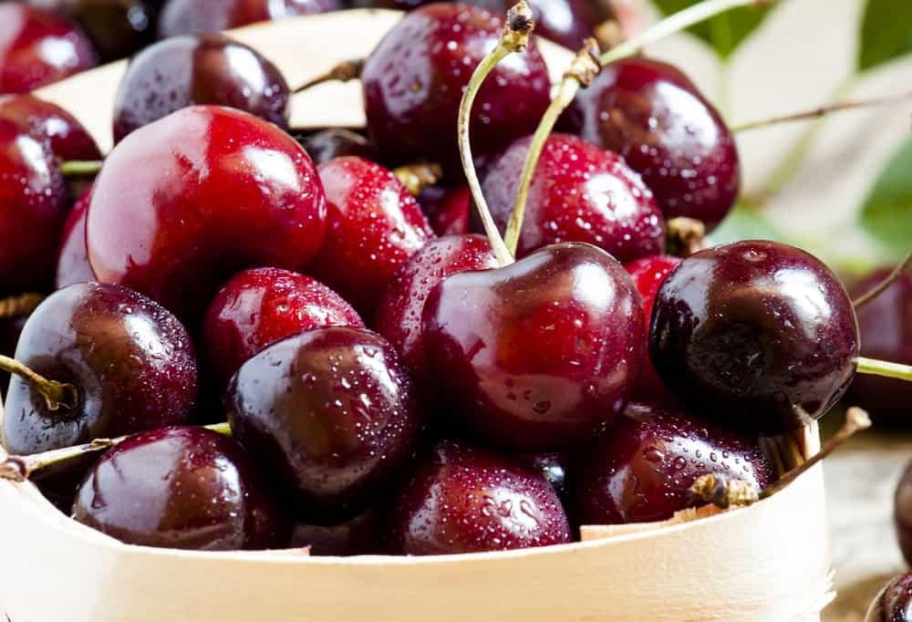 Dark Red Cherries
