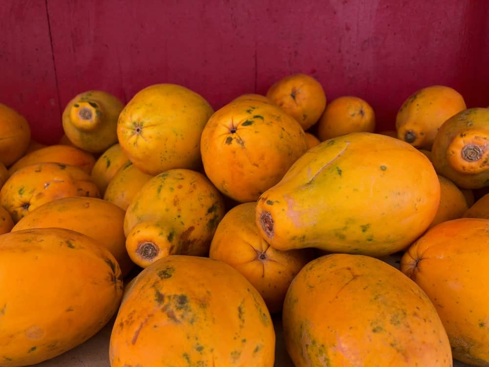 Hawaiian Papayas