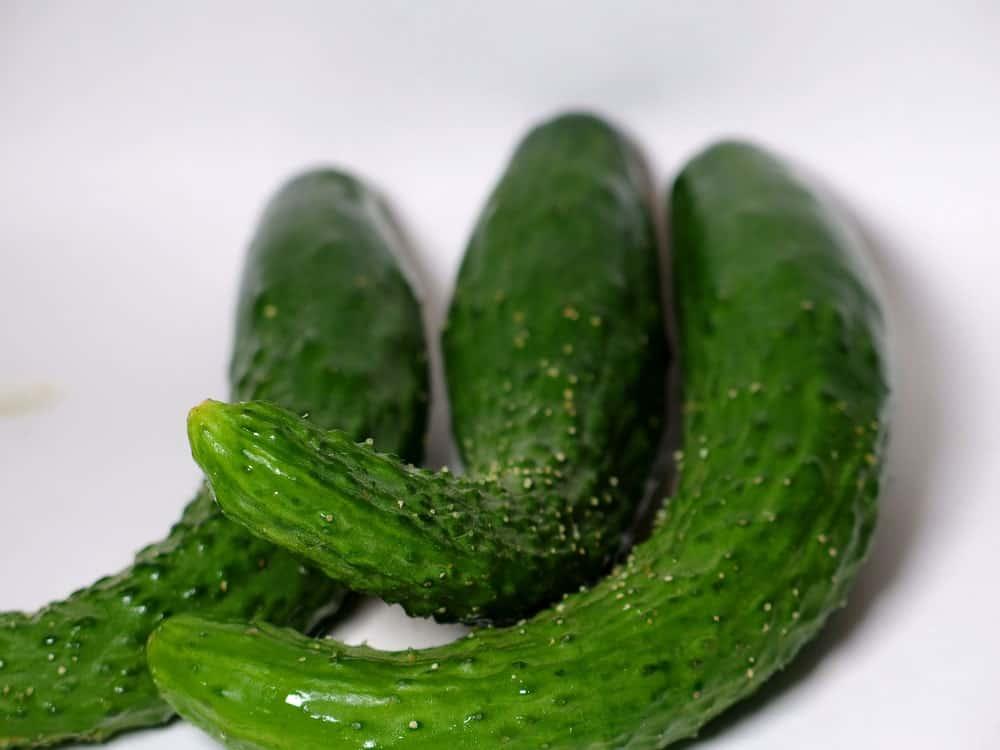 Kyuri/Japanese Cucumbers