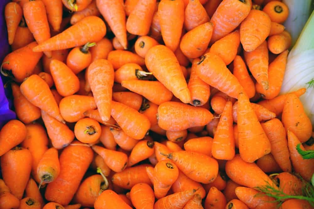 Mini Carrot Varieties