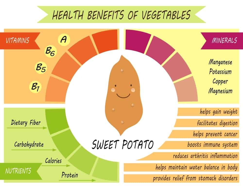 Sweet Potatoes Nutrition Facts Chart