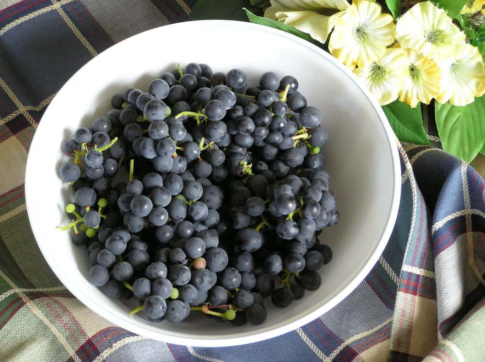 Valiant Grapes