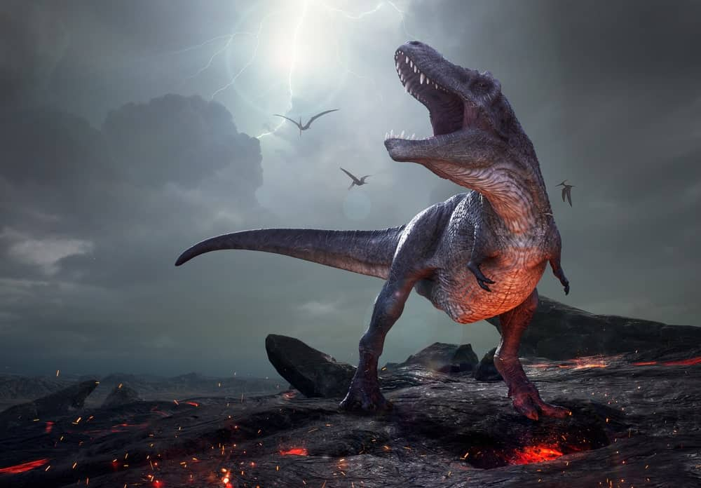 T-Rex roaring on a volcanic mountain