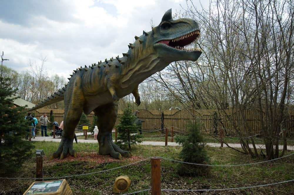 Model of Carnotaurus