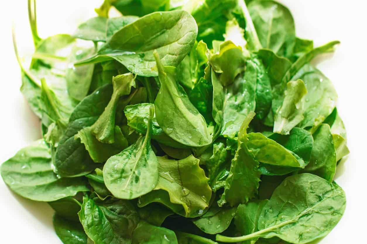 Fresh Savoy Spinach