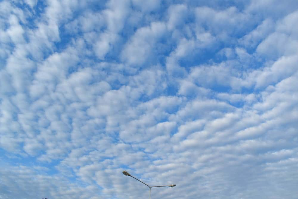 Blue Sky with Altocumulus Clouds