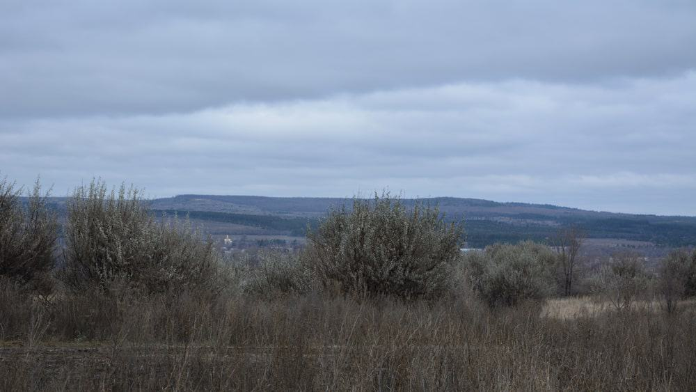 Cloudy Russian Landscape