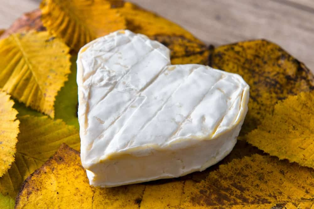 Heart shaped cheese on autumn leaves