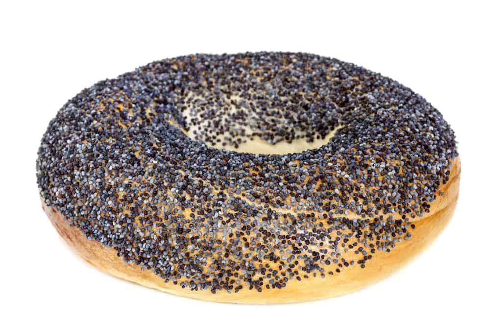 A Bagel Covered with Blue Poppy Seeds