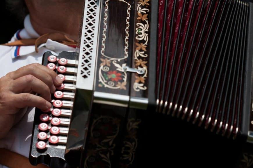 17 Different Types of Accordion