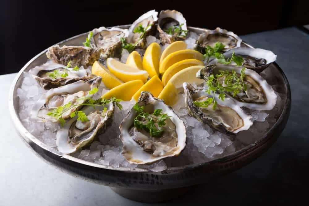 A Platter of Oysters with Lemon and Ice