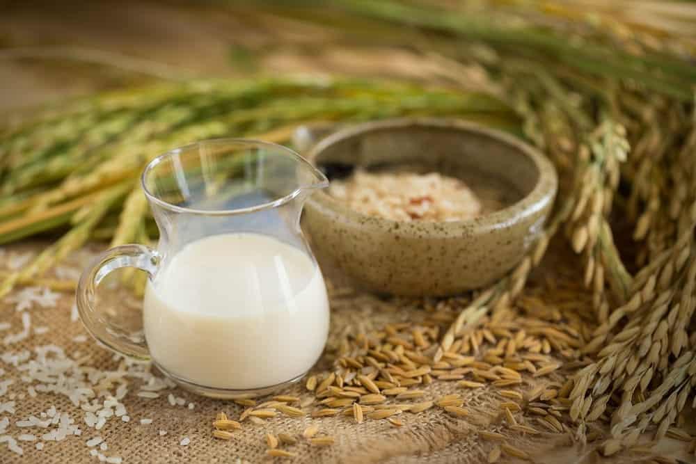 A Jug of Fresh Rice Milk