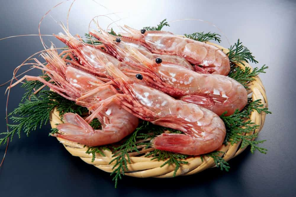 Raw Spot shrimps