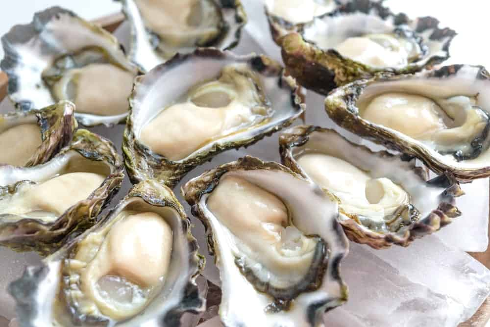 Freshly Shucked Sydney Rock Oysters