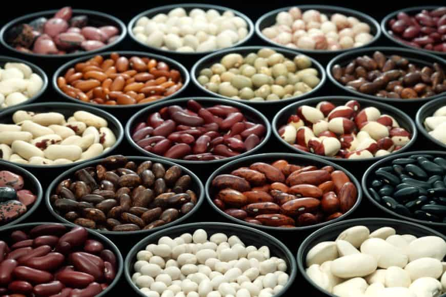 Bowls of various types of beans and legumes.