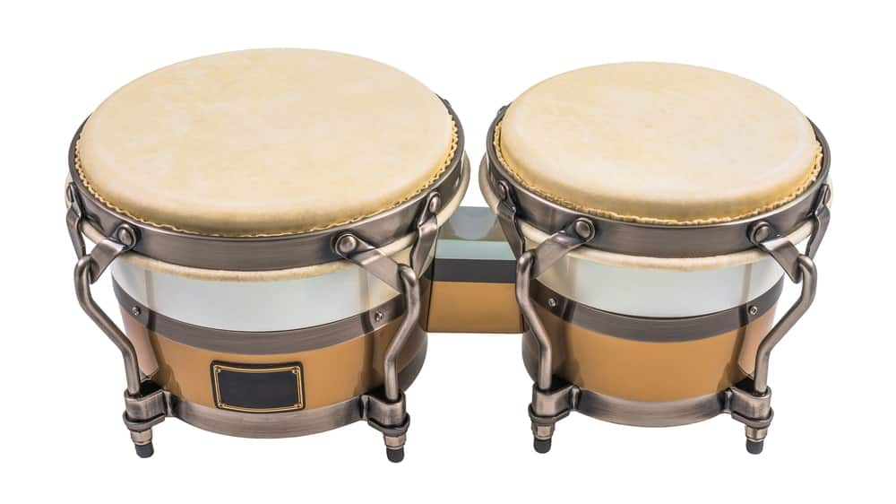 Bongo drum; one of the many types of drums