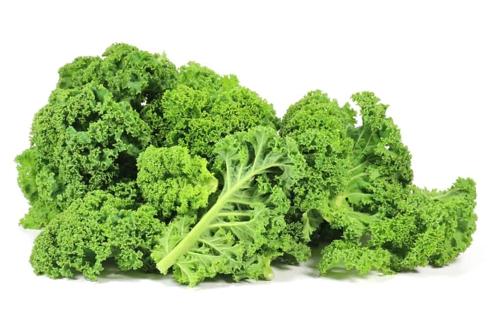 A bunch of curly kale