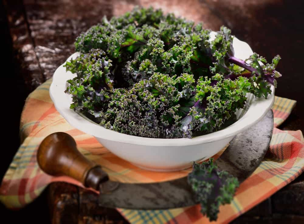 A bowl of red Russian kale