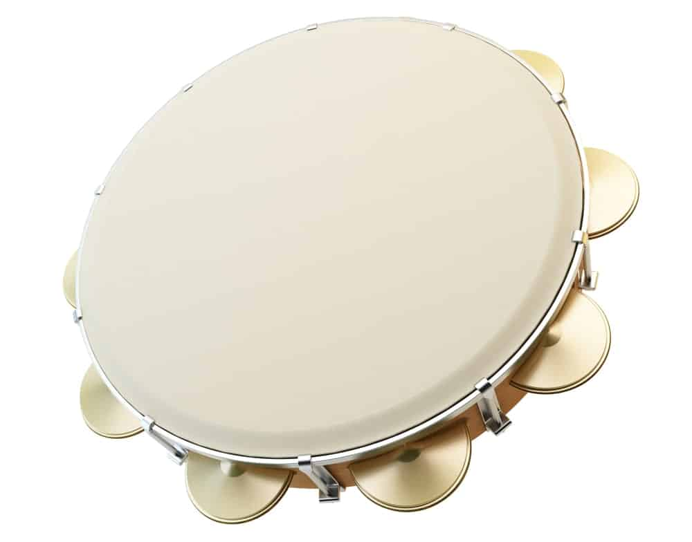 Tambourine drum; one of the many types of drums