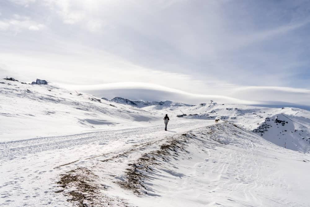 A lone man walking in the Sierra Nevadas.
