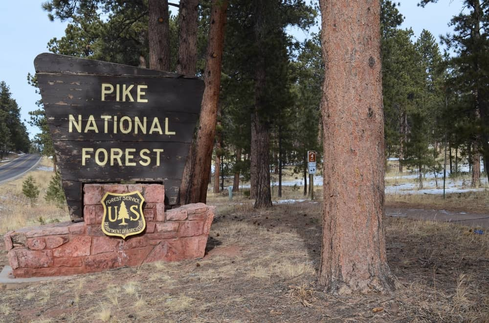 This signage is like the entry of the Pike National Forest and the Centennial Trail. Both areas are great for outdoor activities such as hiking, mountain biking, rock climbing, etc.