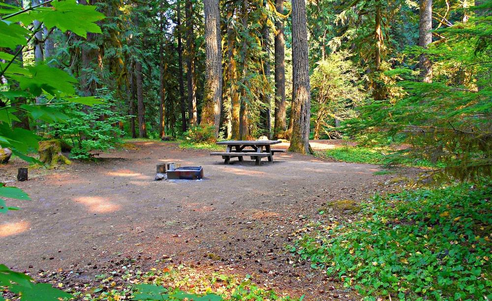 Buescher State Park is the best choice for nature-loving visitors who are looking for beautiful bike and hiking trails.