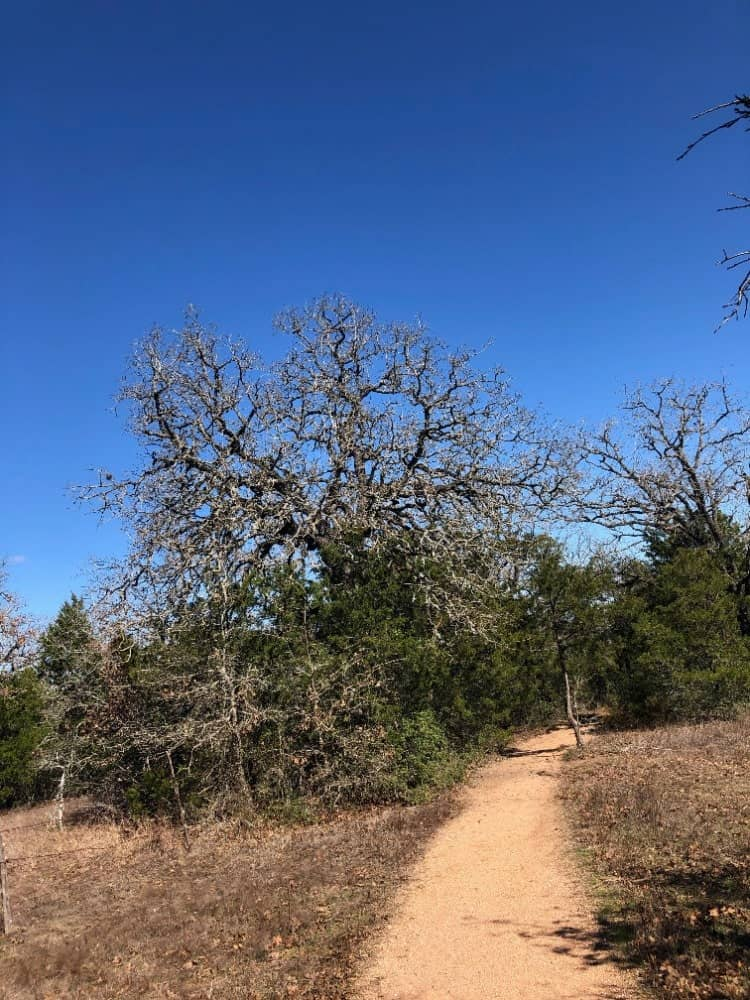 The McKinney Roughs Nature Park is a unique destination to visit because of its four separate ecosystems that guests can view.