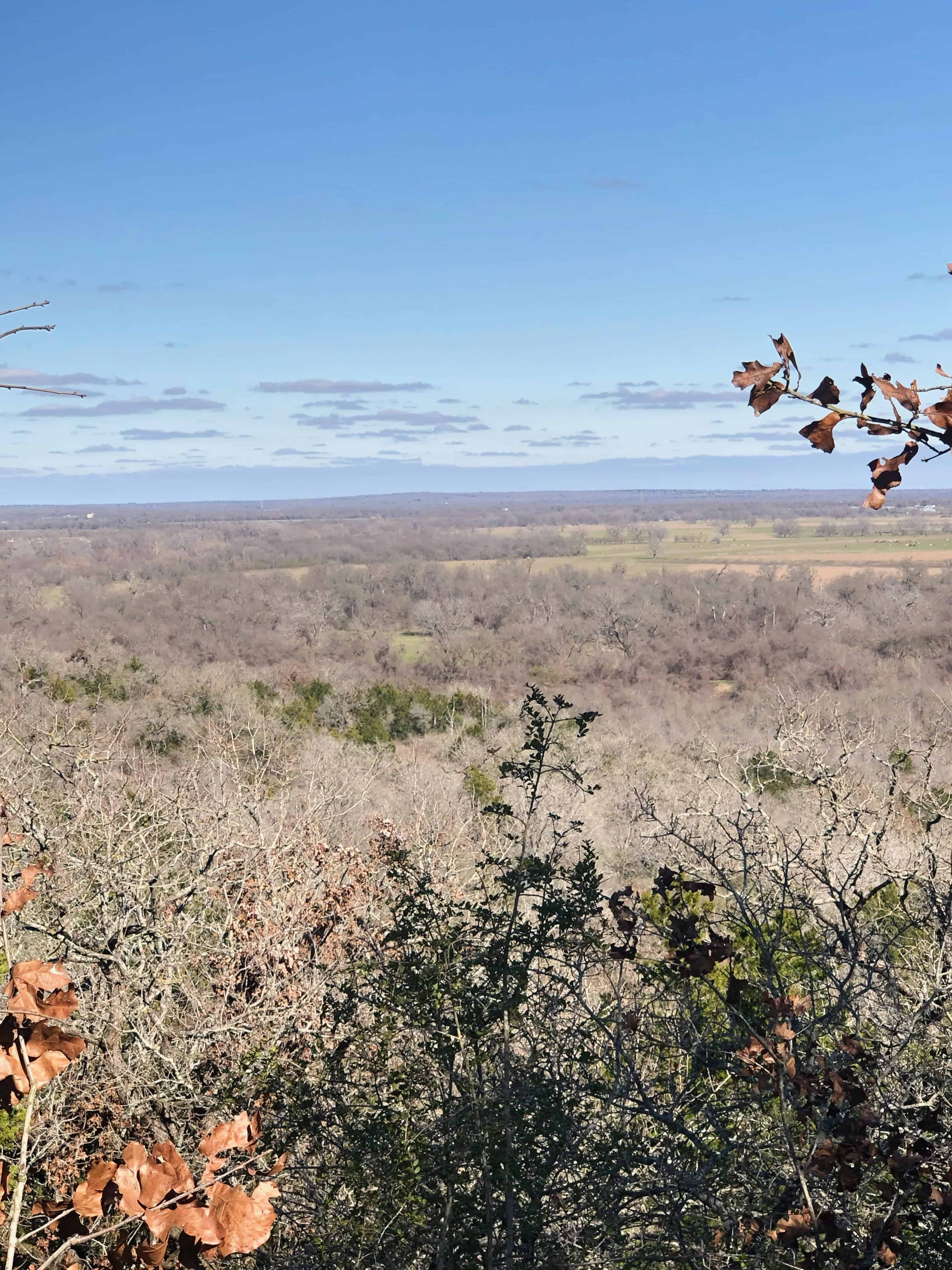 Bastrop is also a nice place to go for a hike. The McKinney Roughs Nature Park offers gorgeous view at the nature surrounding the city.