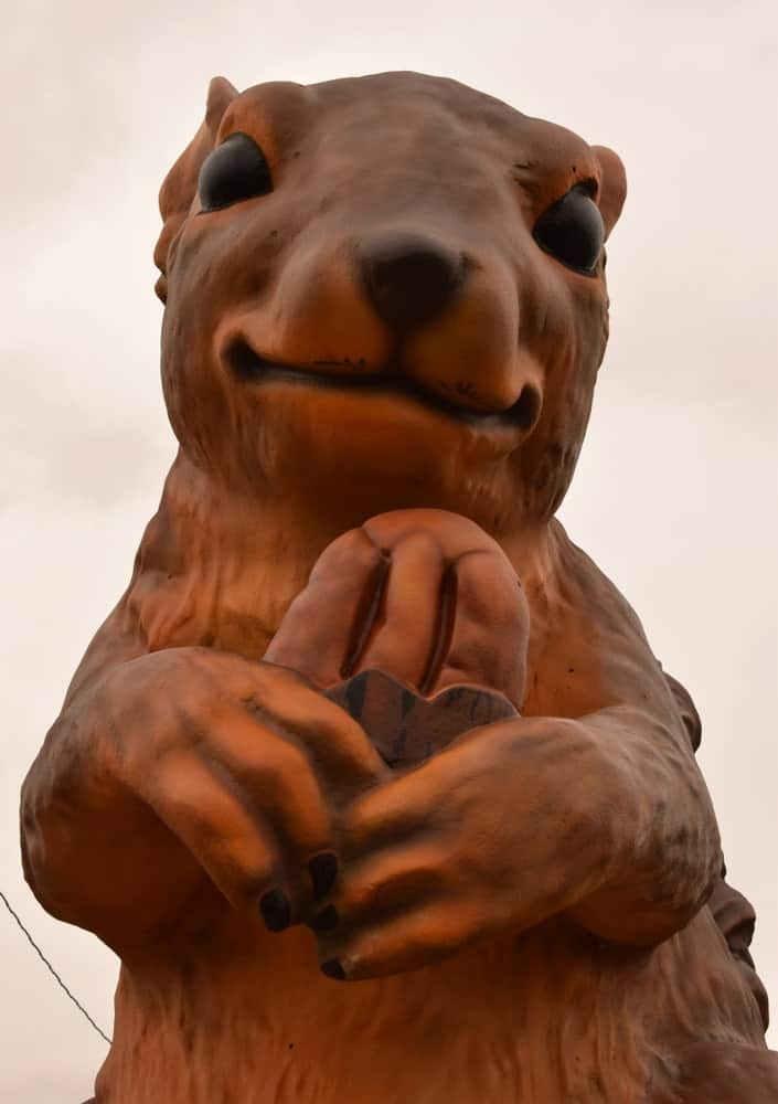 Here's a photo of Ms. Pearl, the Giant Squirrel, a very popular 14-feet tall squirrel statue, which is the largest in the world.
