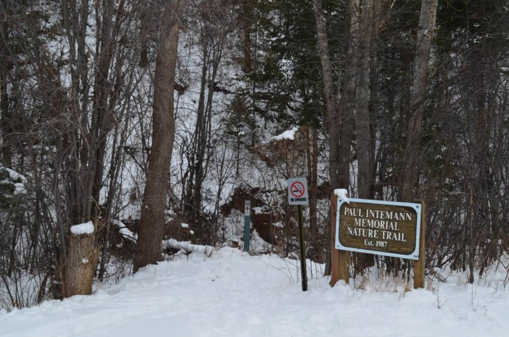 A view of the entrance of the Paun Intemann Memorial Nature Trail near the Crystal Park.