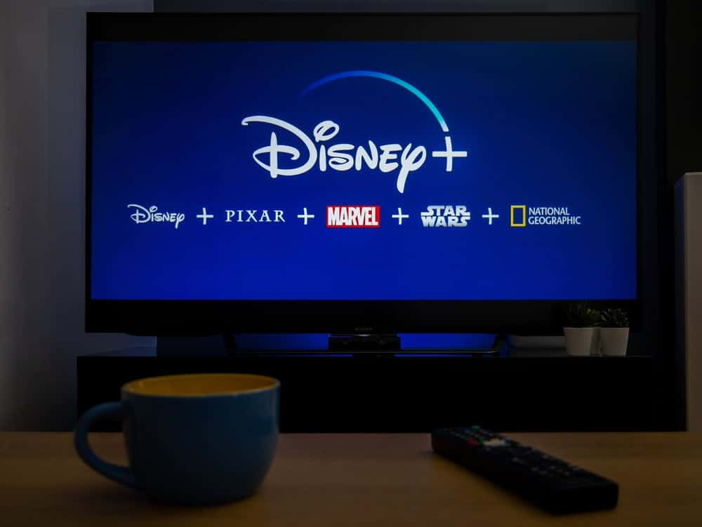 A TV showing the Disney+ logo along with its various content.