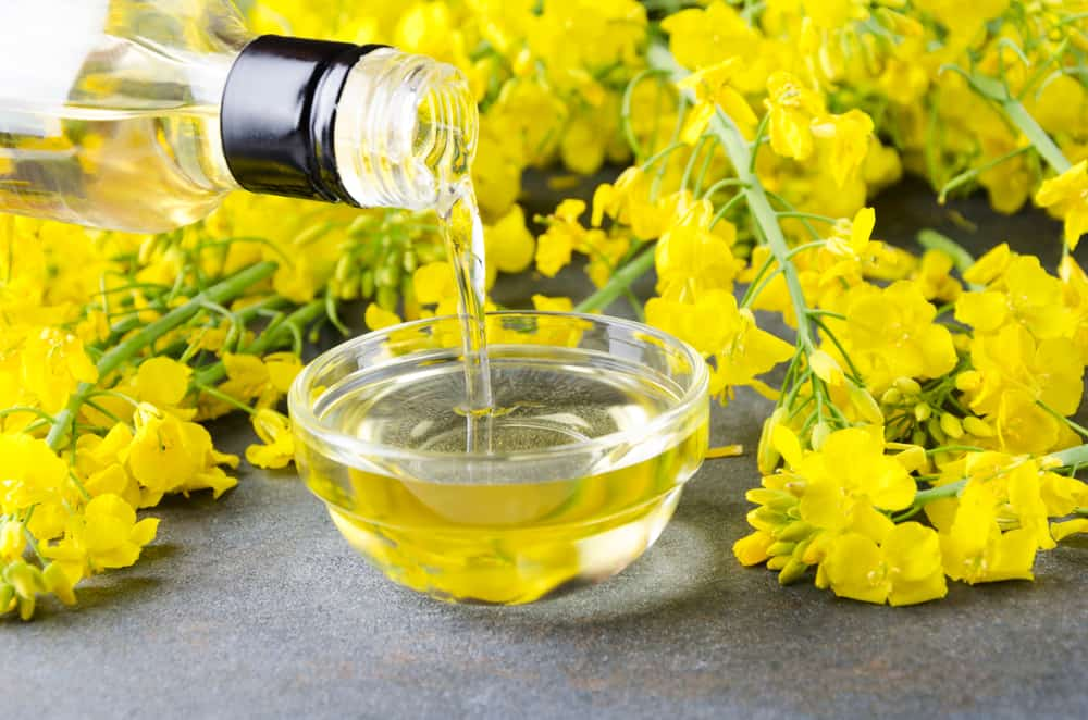This is a close look at a bottle of canola oil being poured onto a glass bowl.
