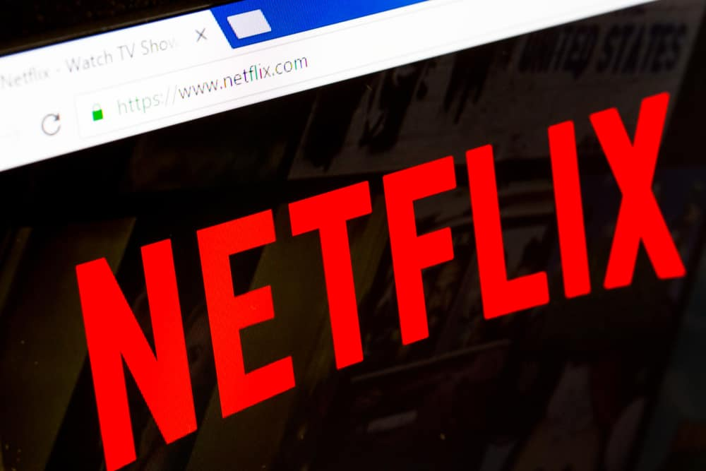 This is a close look at the Netflix logo showcased in its website.